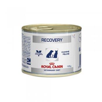 RAÇÃO ROYAL CANIN RECOVERY LATA 195 GR